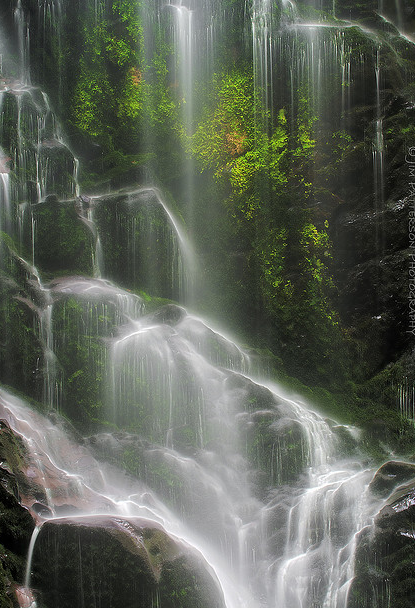 Berry Creek Falls | Big Basin State Park, California | by Jim Patterson