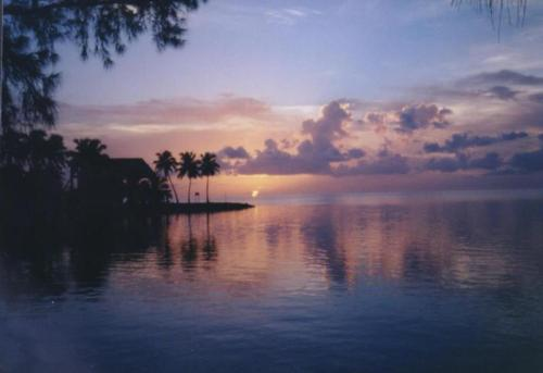 40. Camp in Key West.