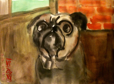 pug #watercolor 40x30cm @rdenker on Flickr.