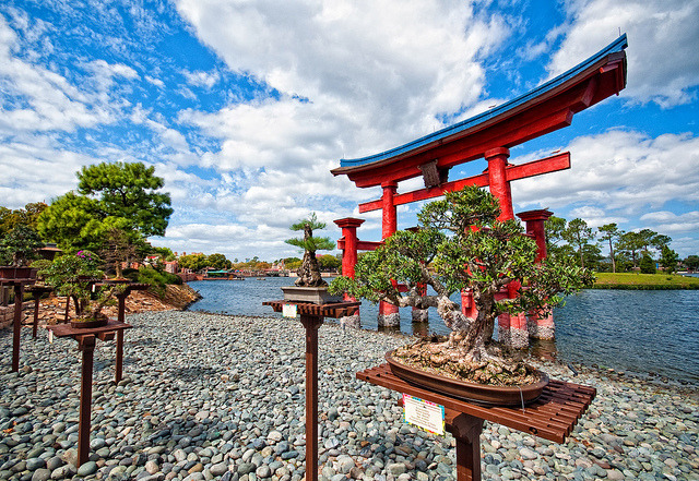 Bonsai And The Tori Gate (Explored) by DisHippy
