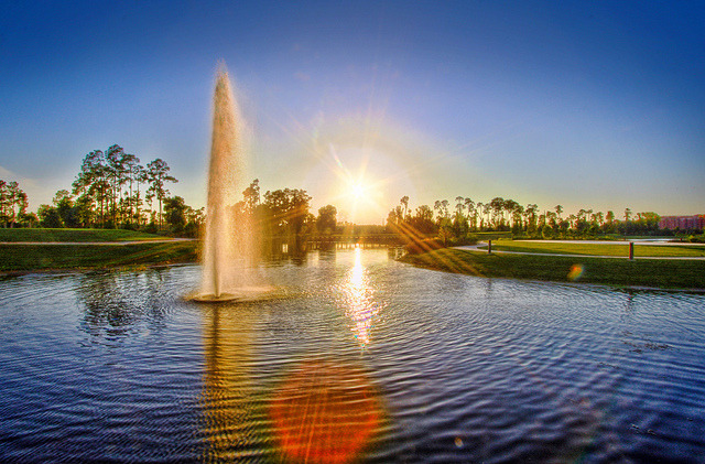 The Waldorf Astoria Orlando Golf Course by Samantha Decker