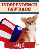 "Independence Paw'rade  The pursuit of life, liberty and an end to puppy mills!  Join us Saturday, July 2nd, in 4 cities across the United States of America, to help raise awareness about the puppy mill/pet store connection and promote pet adoption!  This fun, FREE event will include:  The option to bring your dog! You'll get a free red, white & blue bandana for      your furry friend! A short, scenic walk with your doggie and human friends. Please wear red, white & blue! The reading of a ""pro-claw-mation"" declaring that all dogs deserve good homes. Family and dog-oriented activities following the walk. Meet adorable, adoptable dogs from shelters and local rescue groups!    New York - July 2nd, 11 AM - 2 PM  START: Paw'rade starts at West 46th St. and 12th Ave (near the USS Intrepid and Pier 84) at 11 a.m. Paw'rade route is approximately 1/2 mile.  END: Paw'rade ends at Pocket Pooches with an adoption event from 12PM - 2PM. Join us to celebrate the store's reopening as a humane, rescue-only model pet boutique. Come view many adoptable dogs from Yorkie 911!   Salt Lake City - July 2nd, 9AM - 1PM START: Walk begins near the North Shelter in the center of Liberty Park (600 E 1300 S)  END: Paw'rade route is approximately a 1 mile loop around the park.  Adoption festival from 10 AM - 1 PM in the park with adoptable dogs from Salt Lake County Animal Services and Humane Society of Utah Best Friends Animal Society Education Ambassadors will also be on hand to do fun and easy projects for kids and an ""I Read to Animals"" demo, plus, face painting & giveaways!  Las Vegas - July 2nd, 6 PM - 9 PM START: Paw'rade starts at 6 p.m. at the Gazebo in Town Square Park (in the middle of the shopping district), 6605 Las Vegas Blvd South END: Paw'rade ends at the Gazebo where there will be festivities and a pet adoption taking place. Abe Lincoln will read the ""pro-claw-mation"" and lead the Paw'rade. Come meet our adorable, adoptable dogs from Las Vegas independent rescuers that will be available until 9 p.m.!  Los Angeles - July 2nd, 10 AM - 2 PM START: Paw'rade starts at Chase Bank (12501 Ventura Blvd. Studio City) END:  Paw'rade ends at Maxwell Dog (12336 Ventura Blvd. Studio City) with an adoption event from 11 a.m. - 2 p.m. Prizes for Best Dressed Dog & Best Dressed Human - up to $200 worth of Maxwell Dog Boutique gift certificates!"