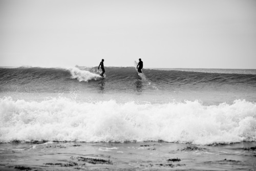 surfing-for-freed0m:  ☯