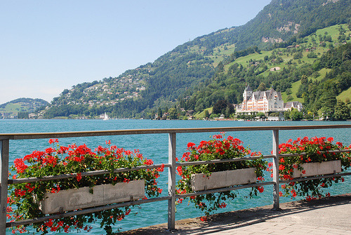 On the lakefront in Vitznau on Lake Lucerne, Switzerland  (by Curnen)