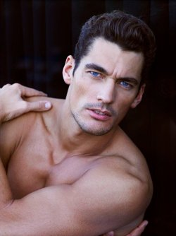 Oh my Gandy.
