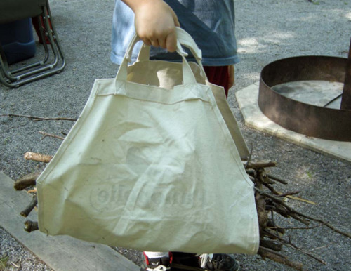 Transform a tote into a handy firewood carrier, tutorial from Betz White.