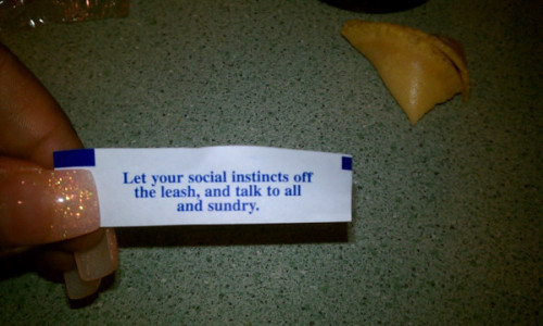 This is what my fortune cookie said today. I dont know what it means, but ok, i'll do that.