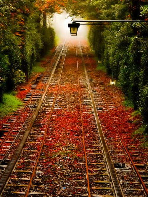 sunsurfer:  Into the Fog, Pennsylvania photo via pennrailroad  Love this! Gorgeous colors!