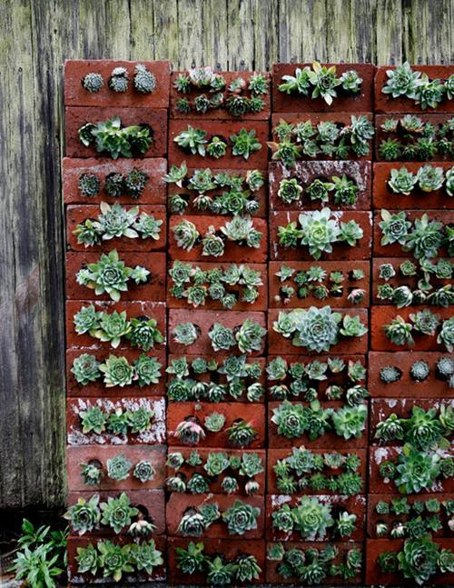gardensinunexpectedplaces:  Vertical gardening in bricks. (via Design*Sponge)