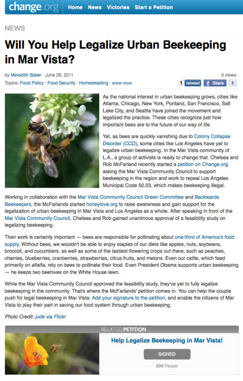 "Will You Help Legalize Urban Beekeeping in Mar Vista? ""As the national interest in urban beekeeping grows, cities like  Atlanta, Chicago, New York, Portland, San Francisco, Salt Lake City, and  Seattle have joined the movement and legalized the practice. These  cities recognize just how important bees are to the future of our way of  life. Yet, as bees are quickly vanishing due to Colony Collapse Disorder (CCD),  some cities like Los Angeles have yet to legalize urban beekeeping. In   the Mar Vista community of L.A., a group of activists is ready to  change  that. Chelsea and Rob McFarland recently started a petition on Change.org asking the Mar Vista Community Council to support beekeeping in the  region and work to repeal Los Angeles Municipal Code 50.03, which  makes  beekeeping illegal. Working in collaboration with the Mar Vista Community Council Green Committee and Backwards Beekeepers, the McFarlands started honeylove.org to raise awareness and gain support for the legalization of urban  beekeeping in Mar Vista and Los Angeles as a whole. After speaking in  front of the Mar Vista Community Council, Chelsea and Rob gained unanimous approval of a feasibility study on legalizing beekeeping. Their work is certainly important — bees are responsible for pollinating about one-third of America's food supply.  Without bees, we wouldn't be able to enjoy staples of our diets like  apples, nuts, soybeans, broccoli,   and cucumbers, as well as some of  the tastiest flowering crops out  there, such as peaches, cherries,  blueberries,  cranberries,  strawberries, citrus fruits, and melons.  Even our cattle, which feed  primarily on alfalfa, rely on bees to  pollinate their food. Even  President Obama supports urban beekeeping —  he keeps two beehives on the  White House lawn. While the Mar Vista Community Council approved the feasibility study,  they've yet to fully legalize beekeeping in the community. That's where  the McFarlands' petition comes in. You can help the couple push for  legal beekeeping in Mar Vista. Add your signature to the petition, and enable the citizens of Mar Vista to play their part in saving our food system through urban beekeeping."" Change.org - by Meredith Slater · June 28, 2011"