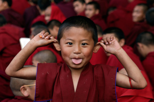 A young Buddhist monk makes a face during the Dalai Lama's prayer session at the Mahabodhi temple in Bodh Gaya.  (Boston.com via saddest-summer)