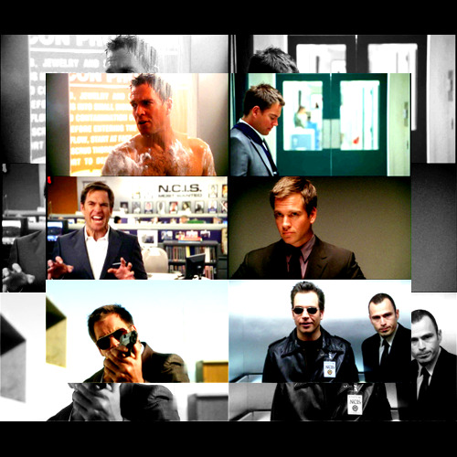 6 caps meme | Very Special Agent Anthony DiNozzo | requested by kmoleary