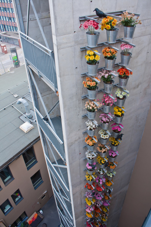 nitazaara:  imagine having this on every building in the world.  earth would be so beautiful