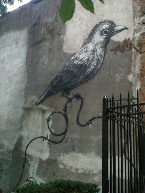 another ROA piece on 2nd st.
