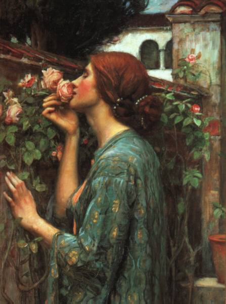 My Sweet Rose (1903) by John William Waterhouse