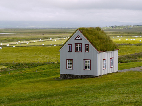 Roof garden, Glaumbær, Iceland by EccyLad on Flickr. Passed through Sauðárkrókur yesterday…