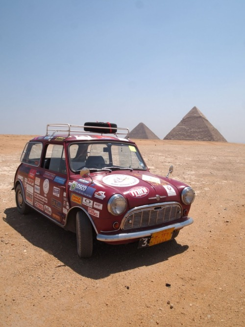 coolerthanbefore:  Mini at Giza.   Driving ANY kind of car on a Safari Rally to a pyramid sounds like a lot of fun! So dope.