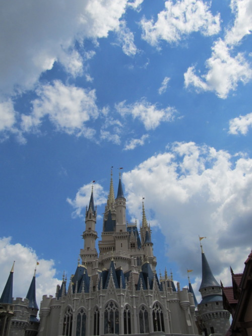 Cinderella's Castle at Walt Disney World- Orlando, FL