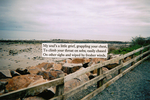 a little grief (by i enrapture)