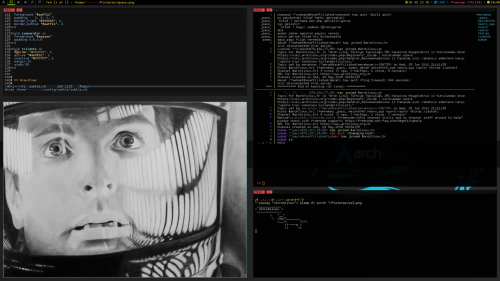 My new cool subtlewm (very nice tiling window manager) desktop.  OS            => Archlinux WindowManager => Subtle WM  weechat       => Irc client feh           => Picture emacs         => Editor shell         => Zsh