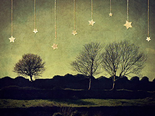 Trees and Stars (by Child of Danu)