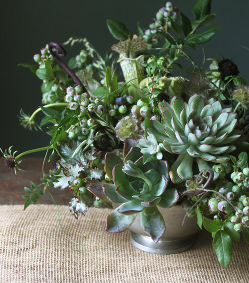 I really love succulents.  via Design Sponge.
