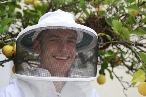 HELP TO SAVE THE HONEYBEE - LEGALIZE URBAN BEEKEEPING IN LOS ANGELES!!http://www.change.org/petitions/help-legalize-beekeeping-in-mar-vista 63 MORE SIGNATURES AND WE ARE AT FIVE HUNDRED!!!***You do NOT need to live in Los Angeles to sign!!