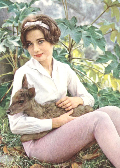 Audrey Hepburn and Ip 1950's