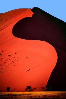 travelfiend:  Dune 45, Sossusvlei, Namibia  This picture is just incredible.