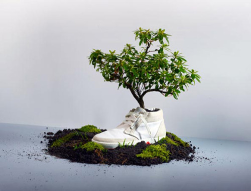 rozanes:  ReCraft Your Sneaker: Zero Footpint Plantable Sneakers Oat, a young innovative company founded two years ago by designer Christiaan Maats, presented the fresh Virgin Collection at the Green Fashion Competition of the AIFW 2011. The show featured the sneaker planted in a white wheelbarrow pushed forward by a scantily clad Adam and Eve. 'Saved from the garden of Eden' was the theme of the show, building on the idea of a sneaker collection made of 'all the good stuff mother earth has to offer'.Aside from being completely biodegradable, the shoes are good-looking, too.   ——————————————————————— Displayed on Recraft | Facebook | Twitter | RSS
