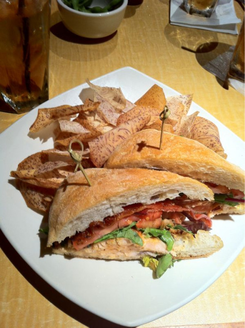 Salmon club sandwich with taro chips at the Kona Grill