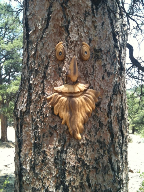We are camping in Colorado this week. Everything here has a friendly face :)