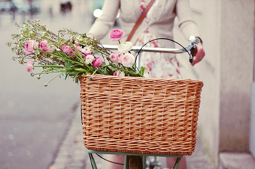 a basket full of flowers to ride a bike in provence