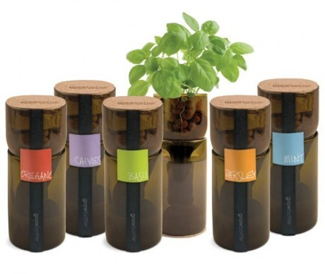 A new way to grow fresh, organic herbs for those of us who are culinary enthusiasts (or who just enjoy growing herbs on our kitchen counters). Growbottles are made from recycled wine bottles which are cut in half and inverted so that the neck of the bottle dips down into a water reservoir. A special wick between the basins allows your herbs to be nourished hydroponically. Eco-friendly, innovative, chic, and classy!Click through for more—
