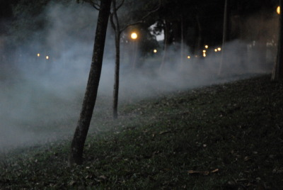 Fogging, 2011Bedok Reservoir, Singapore