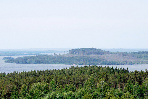 Kontiolahti (by s.niemelainen)