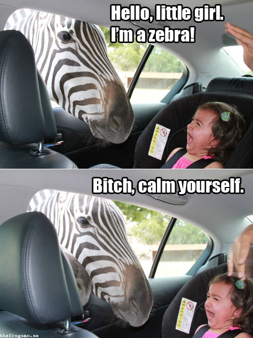 verbatim what i would say if i were a zebra.