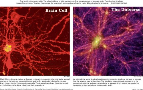 did-you-kno:  Similarity between Neurons and the Universe. Must see Larger here
