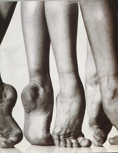 "yayandstuff:  paloma herrera('s feet)   ———————————————————————————————————- I love ballet feet. They are my favorite feet to work on (ok…more like observe some other genius working on). Especially because when I say things like ""Ohh… I see how you have shifted your weight to the 4th and 5th mets and now your tib. anterior is way over-compensating."" the dancers attached to these feet know exactly what I am talking about. Smarties."