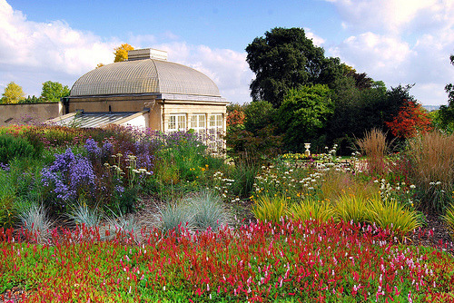 themeetcute:  sheffield botanical gardens. I want to spent the summer here.