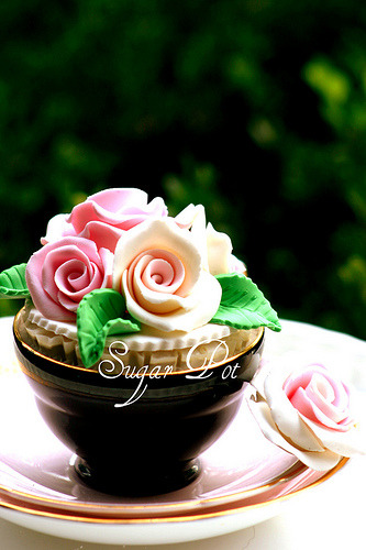 Celebrate LoVe….LiFe & HaPpInEsS (by Sugar Pot)