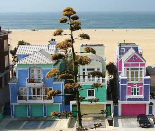 sunsurfer:  Beach Front, Malibu, California photo via bing