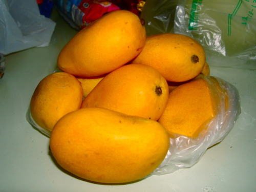 Vacationing in Shanghai Part 2. The Best Mangoes I've ever had. These mangoes are the size of small golf balls and are more like midget mangoes. But they carry an intensely rich mango flavor unlike any other. The seed of these tiny mangoes are really flat and slender, unlike your traditional mango seeds. I don't think I've ever had mangoes this good. In Taiwan, they also have tiny mangoes that are the same size, but the ones in Taiwan are usually green and tart. What's the most amazing fruit you've ever had?