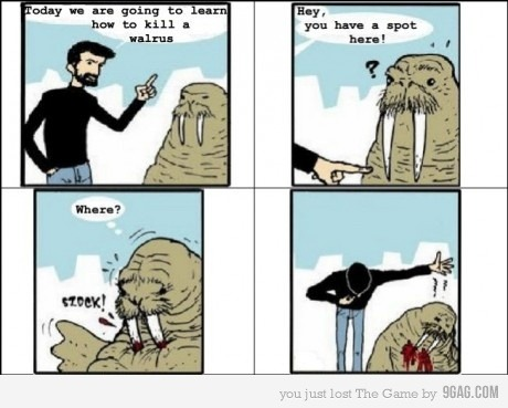 9gag:  How to kill a walrus