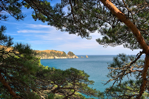 Seascape in a pine frame. (by vladsv)