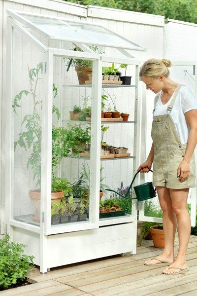 ilovemyapartment:  Mini Greenhouse  omg want want want
