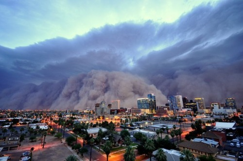 alla1:  cynicalforsurvival:Phoenix. the end of the world. a dust storm.    More amazing photos.