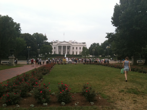 White House, today.