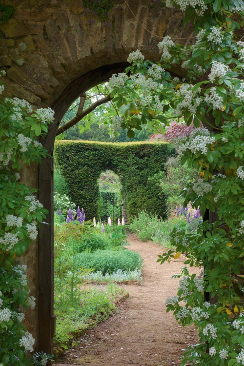dyingofcute:  So many secret gardens