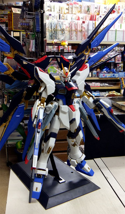 ohnicegundam:  PG 1/60 Strike Freedom Gundam (Release Date: Dec 11th, 2010, Price: 26250 Yen).  Agny, look! It's so beautiful <3